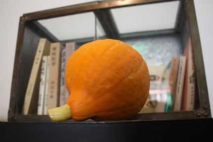 おかぼちゃさま