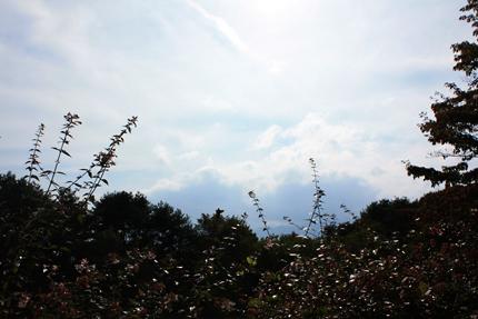 今日の甲斐駒ヶ岳は雲で覆われています