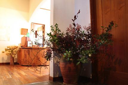 野バラ、ヒイラギ、カシワバアジサイとコデマリの葉っぱ