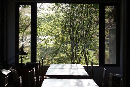 喫茶室の奥までとどく夕方の光 ヤマザクラの木漏れ日はゆらゆら揺れて水面のようです