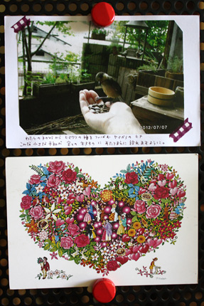 peace card 2012,その23