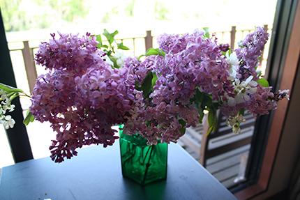 かぐわしいライラックの花