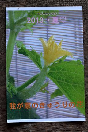 peace card 2013 その16