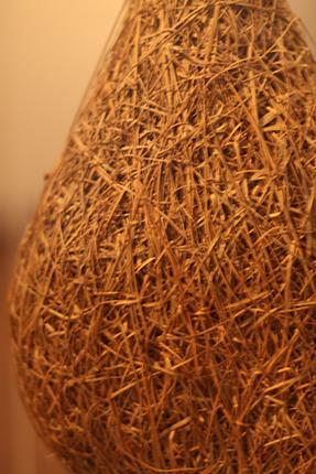 編み物上手なキムネコヨウジャクの巣!お見事!