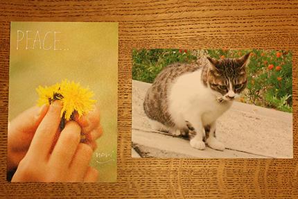 peace card 2015 その20