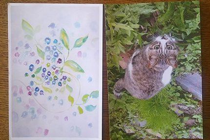 peace card 2016 その11